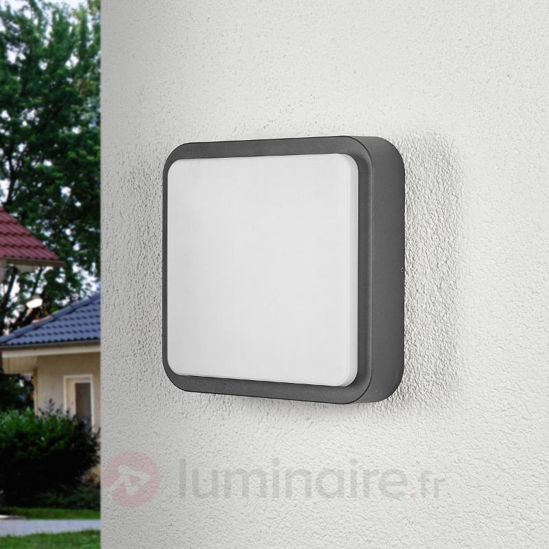 Applique d'extérieur LED arrondie Maxine - null