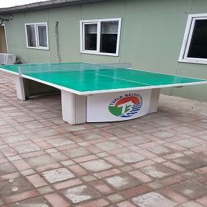Dış mekan masa tenisi masası