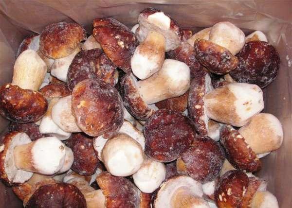 гриб белый  - гриб белый, заморозка, все сорта