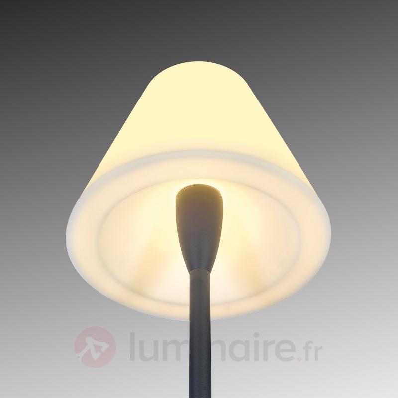 Lampadaire d'extérieur élégant Adegan - Lampes décoratives d'extérieur