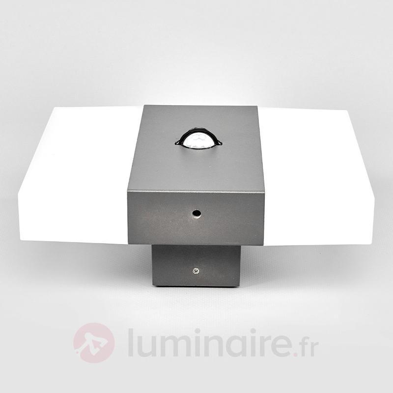 Kumi - applique d'extérieur LED - Appliques d'extérieur avec détecteur