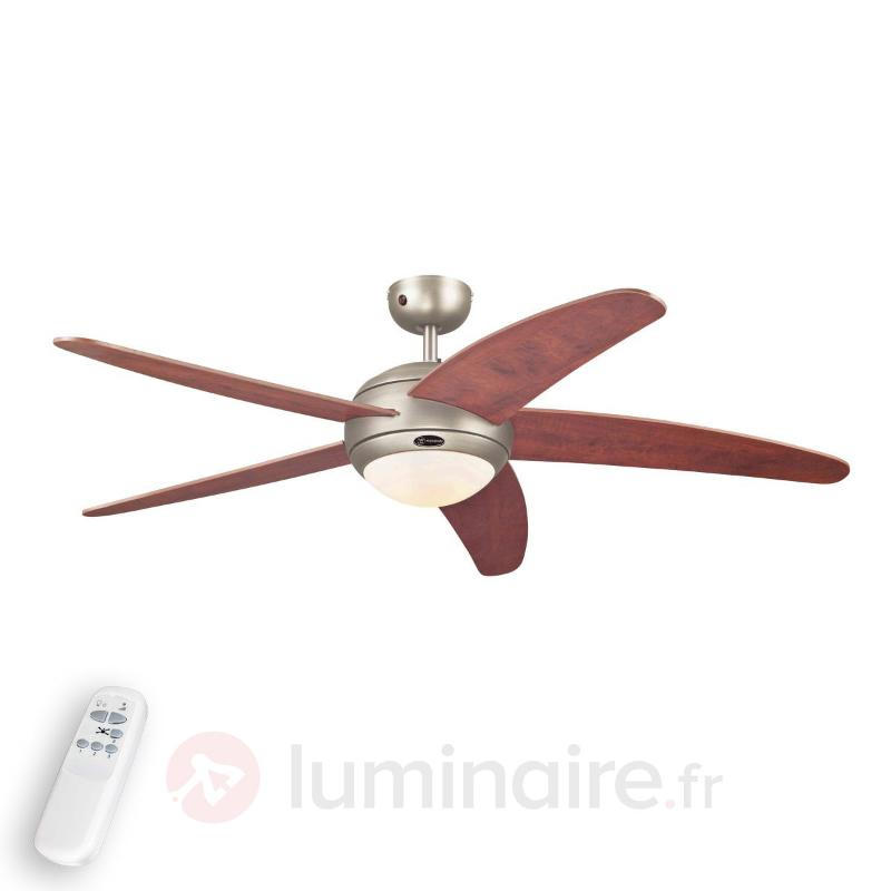 Ventilateur de plafond Bendan en Dark Pewter - Ventilateurs de plafond lumineux