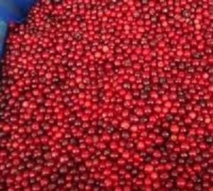 Брусника замороженная - Vaccinium vitis-idaea