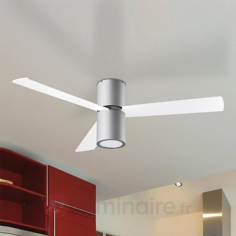 Ventilateur de plafond FORMENTERA ac télécommande - Ventilateurs de plafond modernes