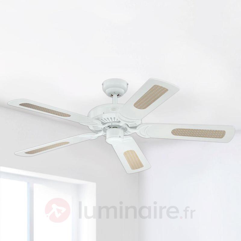 Ventilateur de plafond blanc Monarch - Ventilateurs de plafond modernes