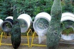 Netz für Verpackung von Weihnachtsbaum - Landwirtschaft und Gartenbau