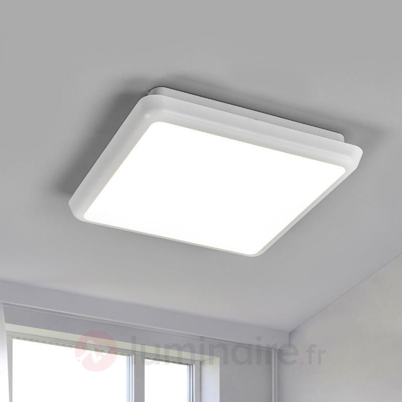 Plafonnier LED carré Augustin, 25 cm - Plafonniers pour locaux humides