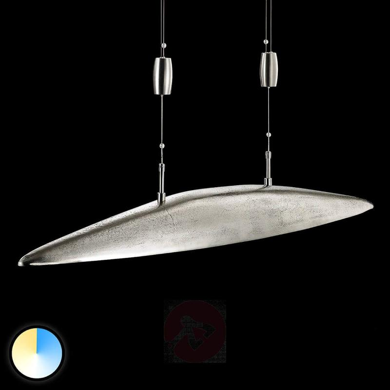 Adjustable luminous colour - pendant light Shine - Pendant Lighting