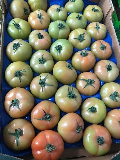 Fruits légumes