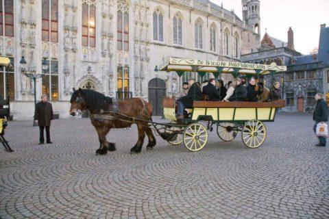 A cheerful pub tour by horse tram - Service