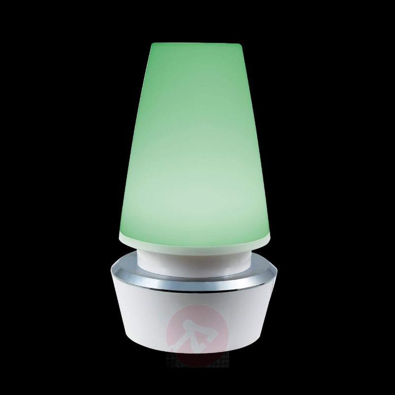 Sylvan decorative LED light,colour change, USB - Window Sill Lights