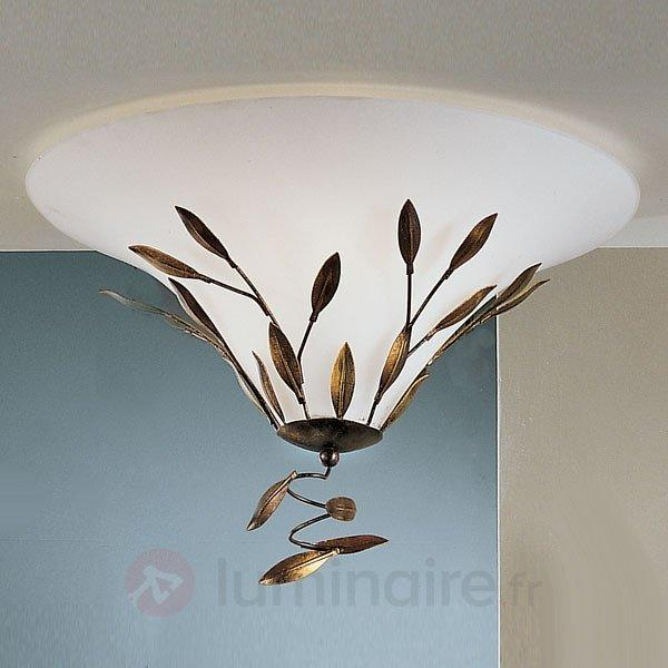 Plafonnier CAMPANA, 2 ampoules, 47 cm - Tous les plafonniers