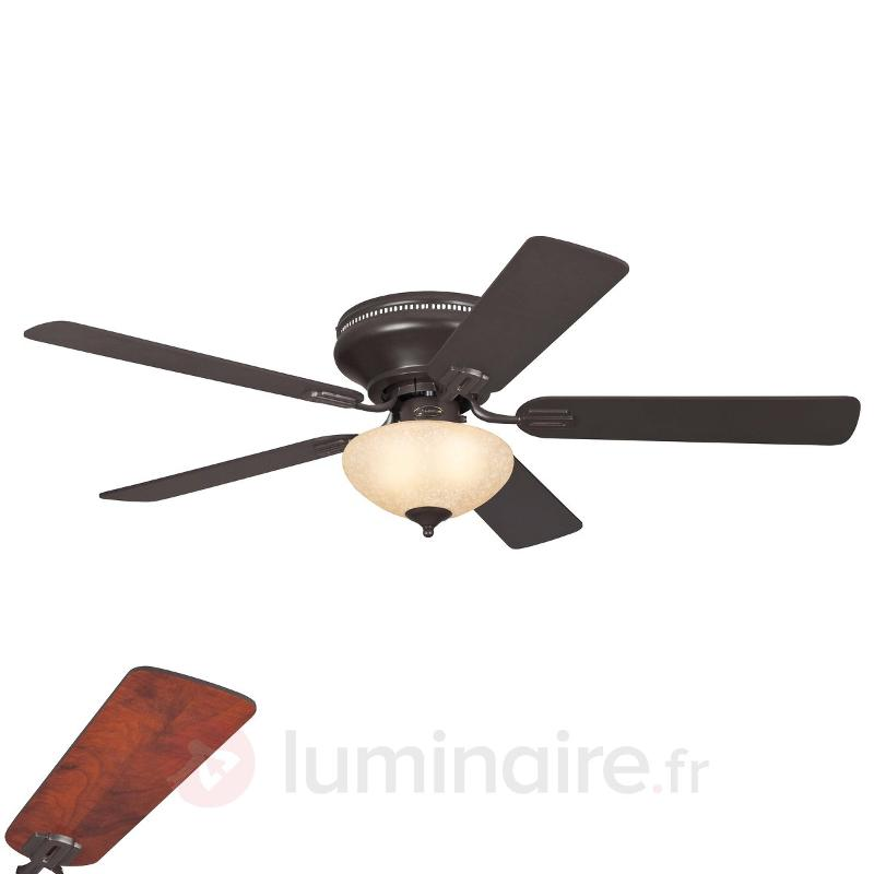Ventilateur plafond lumineux rustique EVERETT - Ventilateurs de plafond lumineux