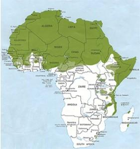 Usługi języków afrykańskich - Usługi tłumaczeń afrykańskich