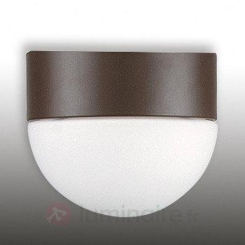 Lampe pr ventil. plafond The Involution - Accessoires pour ventilateurs de plafond