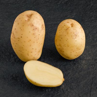 Potatoes - Yellow skin - MELODY