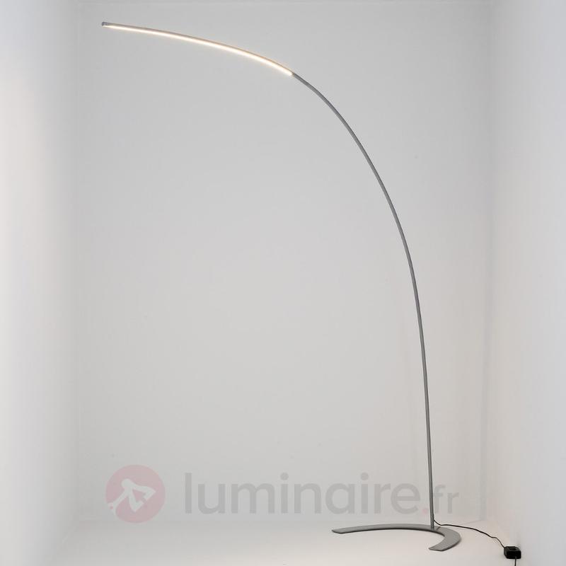 Lampadaire LED Danua, argenté - Lampadaires LED
