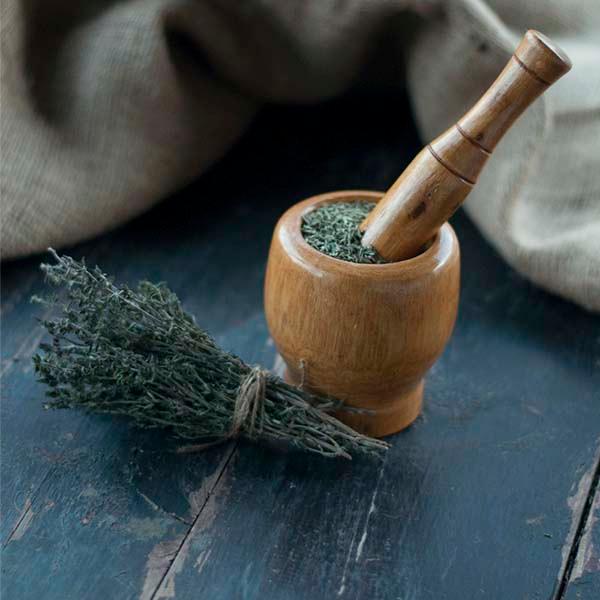 Organic Thyme - Organic Thyme - Thymus Vulgaris