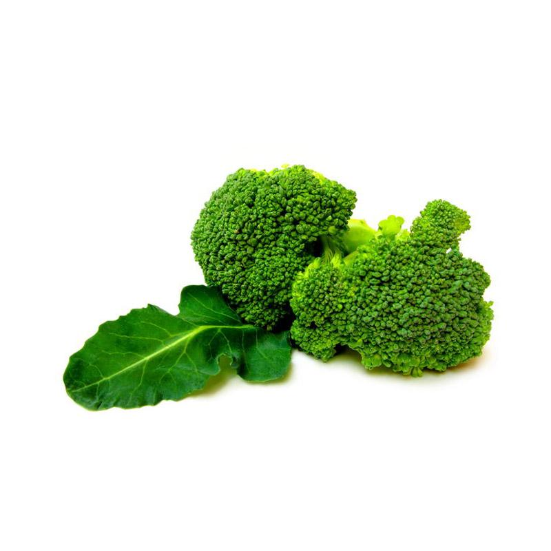 Broccoli extract Powder