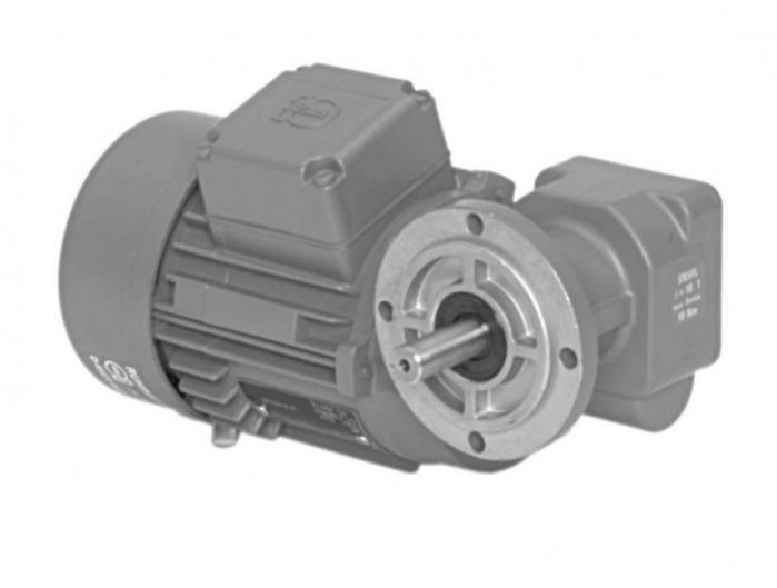 SN5FL - Single-stage gear drive with solid shaft
