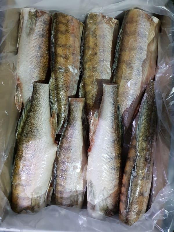 Тушка из рыбной продукции -