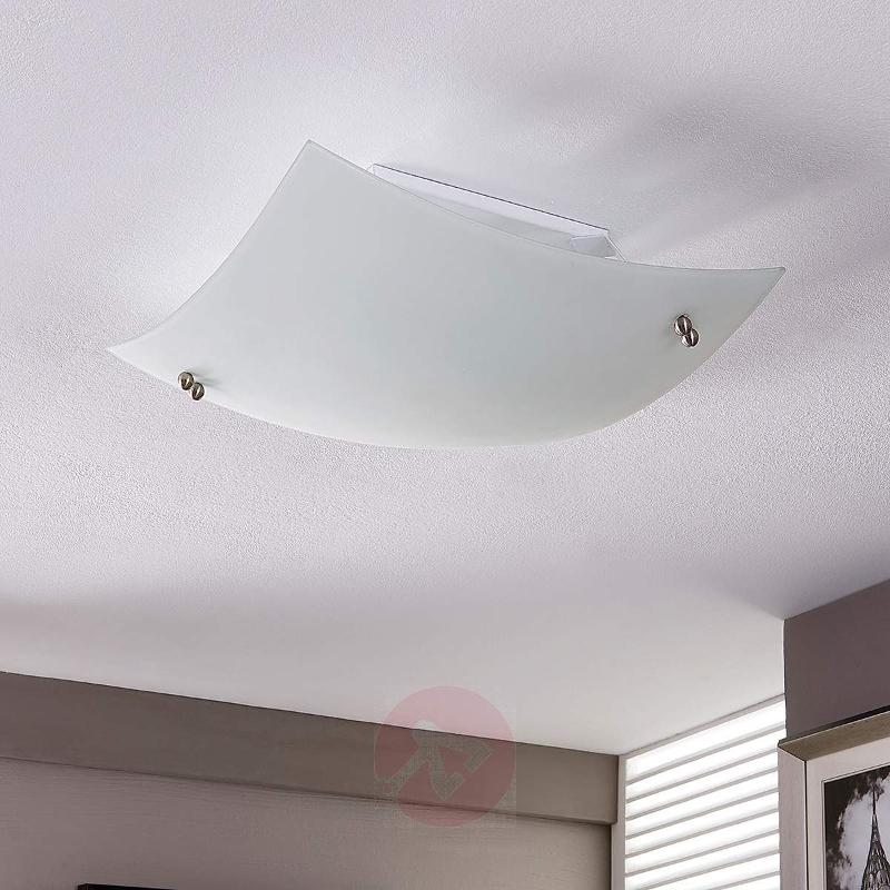 Domed ceiling light Vincent with an E27 LED - Ceiling Lights