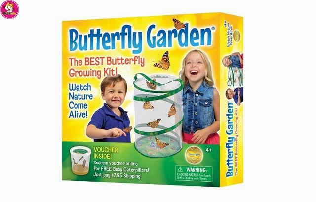 Butterfly Garden - Educational Toys