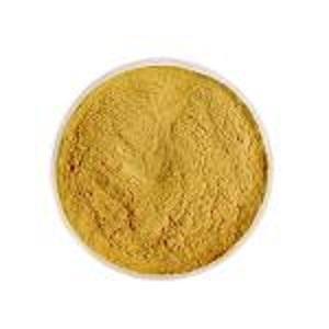 Extrait de racine de ginseng rouge - Odeur: Caractéristique  Apparence: Poudre jaune-clair