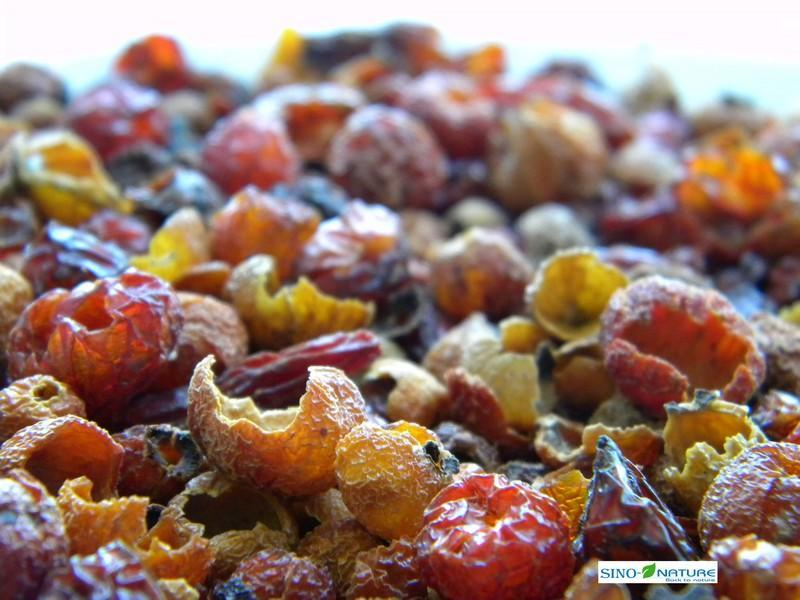 Rosehips - Shells
