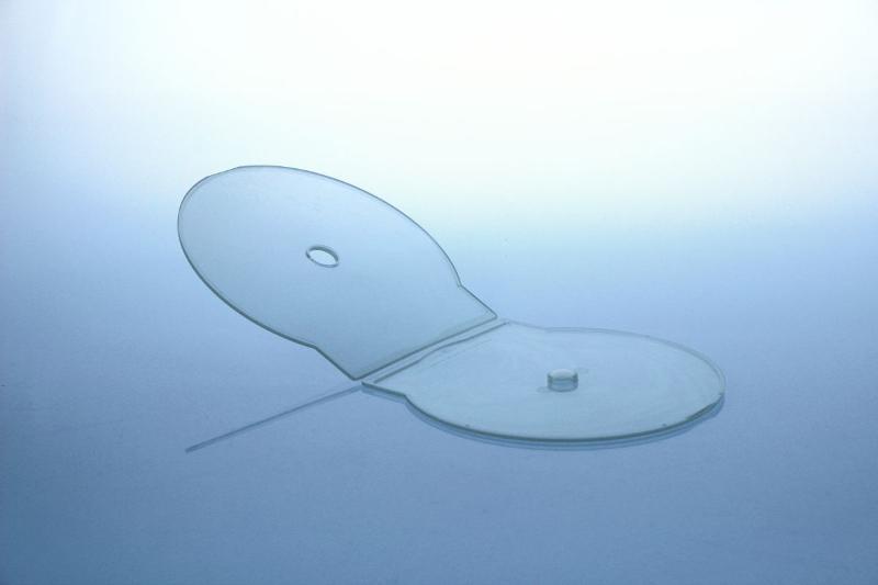 Original C-Shell Box - Muschelbox - transparent - Shellboxen