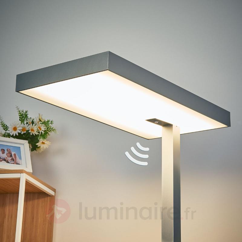 Lampadaire LED de bureau Nora avec détecteur - Lampadaires directs et indirects