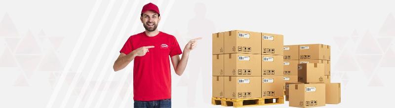 Pourquoi choisir ASN Trans-logistic pour le transport de vos palettes à Paris - null