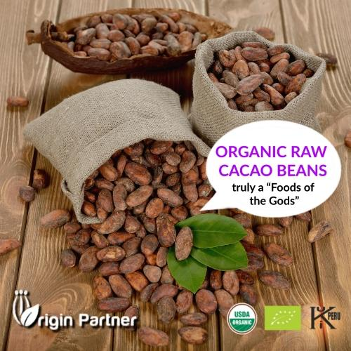 ORGANIC RAW CACAO BEANS - PERUVIAN CACAO
