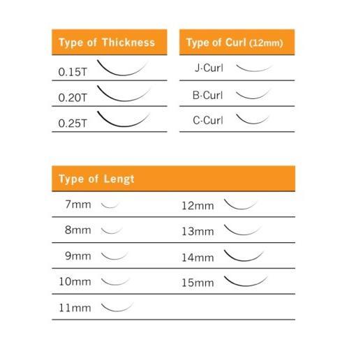 Lashes Basic Case - Cils