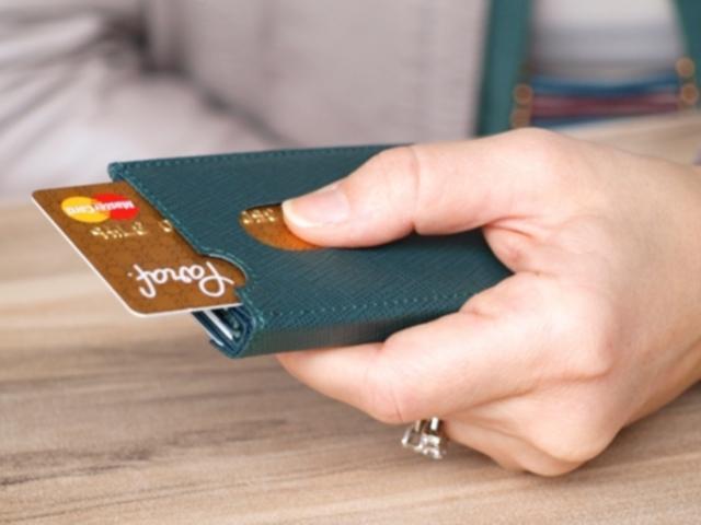 Leder Geldbörsen und Taschen