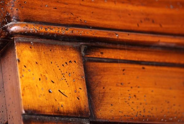Corniche et pilastre en bois - null
