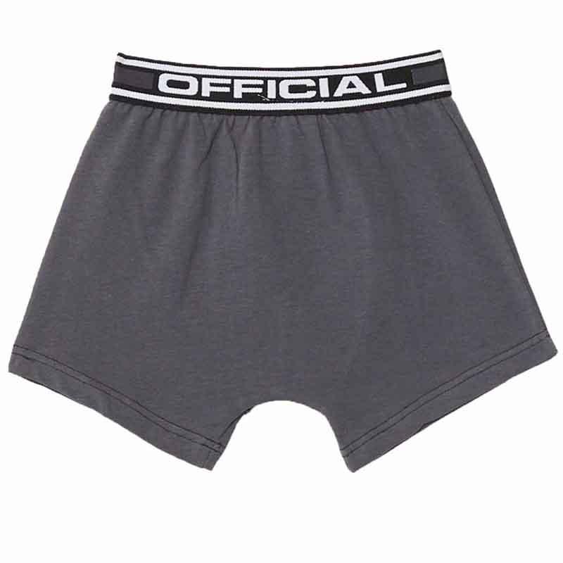 Distributor Boxer underwear kids RG512 - Underwear