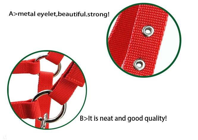 horse /donkey halter,metal eyelet,21MM wide  - horse /donkey halter,metal eyelet,21MM wide &5MM thick PP webbing
