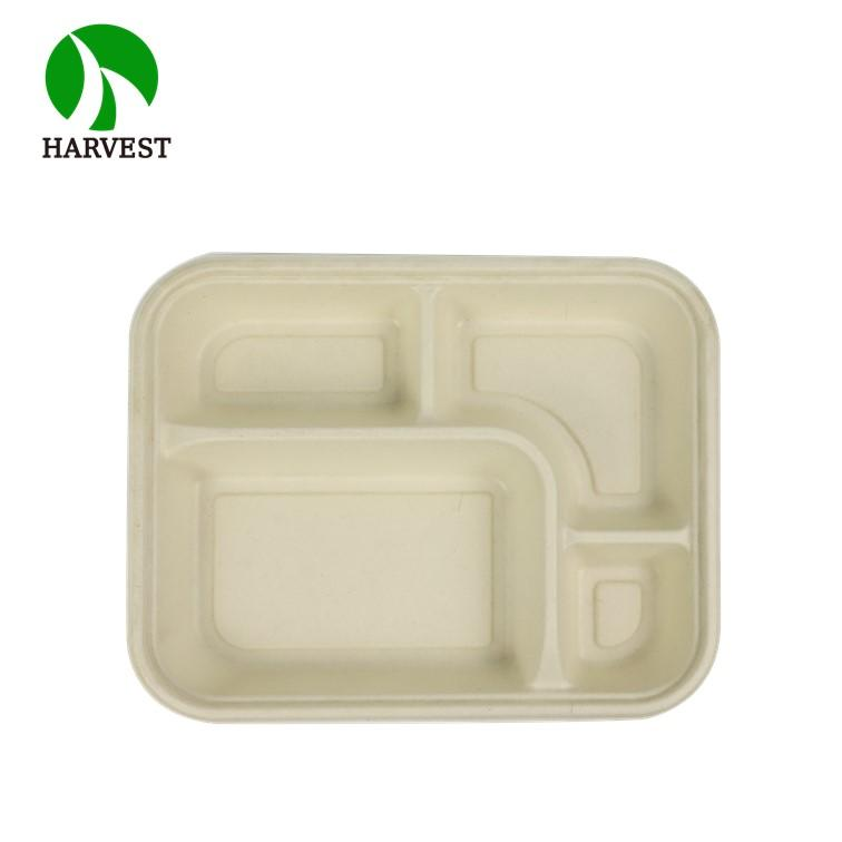 4 Compartment Biodegradable Bagasse Pulp Food Packaging Bento Box - Green Collection