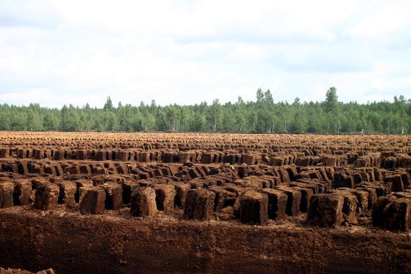 Sod Peat