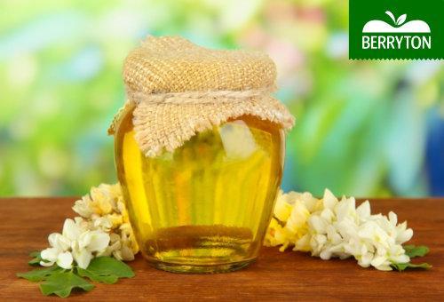 Acacia Honey - Honey