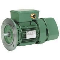 Brake induction motor - FAP Patay AC Brake 35 to 290 Nm