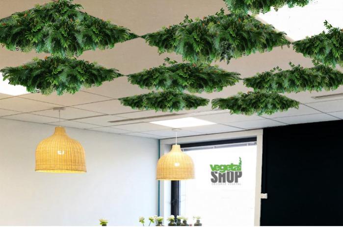 Dalle végétale pour faux plafond bureau décoration - Dalle végétalisée en artificiel décoration bureau socièté entrerpise