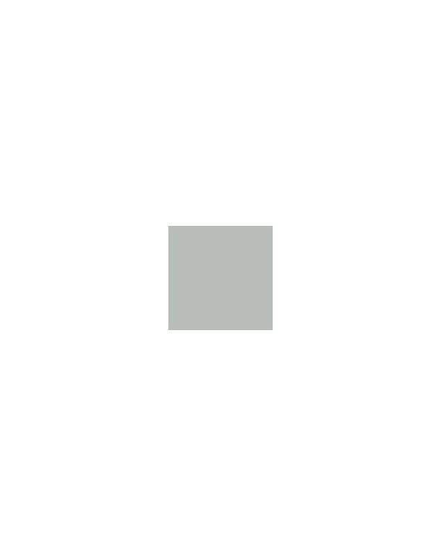 PP GRIS 7035 1KG - PATES PIGMENTAIRES