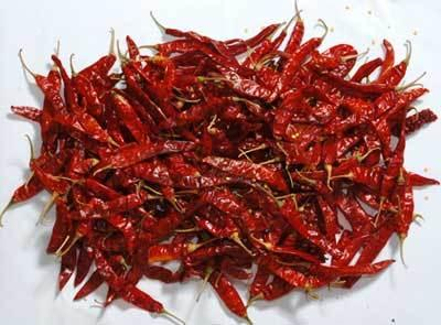 Teja Red Dried Chilli - Teja Red Dried Chilli Manufacturer Exporter Supplier india