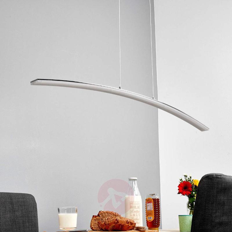 Lorian curved LED pendant light - Pendant Lighting