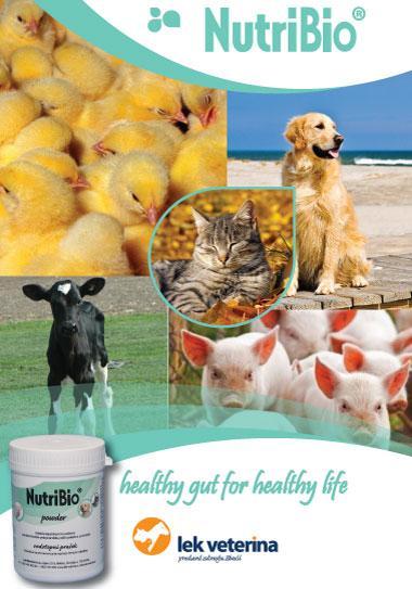 NutriBio - Dietetic supplement for improving gut health