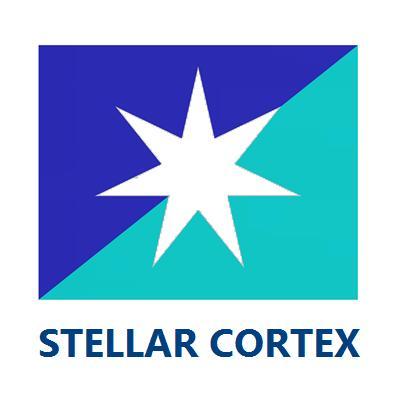 SERVEUR 4U STELLAR CORTEX HELIOS RS418E38 Series - serveur ordinateur pc industriel rackable 4U Intel Xeon E3-1200v6 1 SSD 480Go