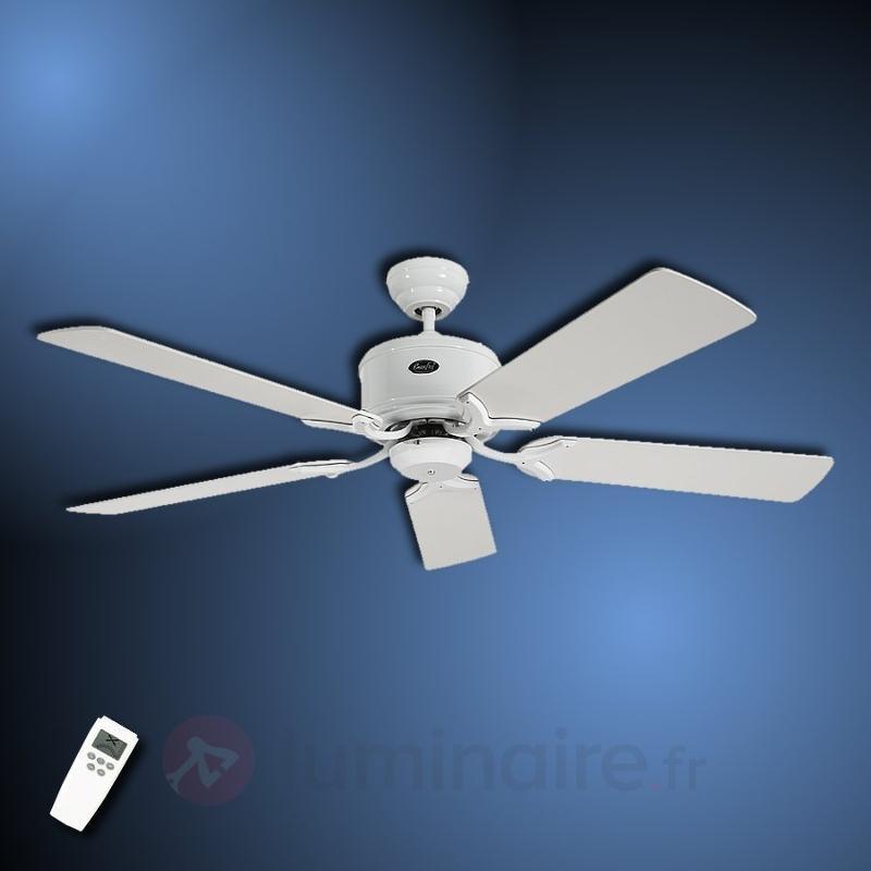 Ventilateur de plafond Eco Elements blanc gris - Ventilateurs de plafond modernes