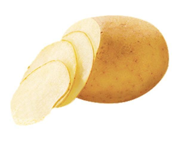 Trancheuse pour chips de pomme de terre  - Coupeuse Trancheuse slicer Chips